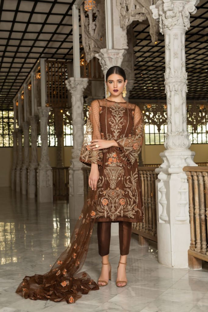 Bareeze-Luxury-Winter-Embroidered-Dresses-Shawls-Designs-1